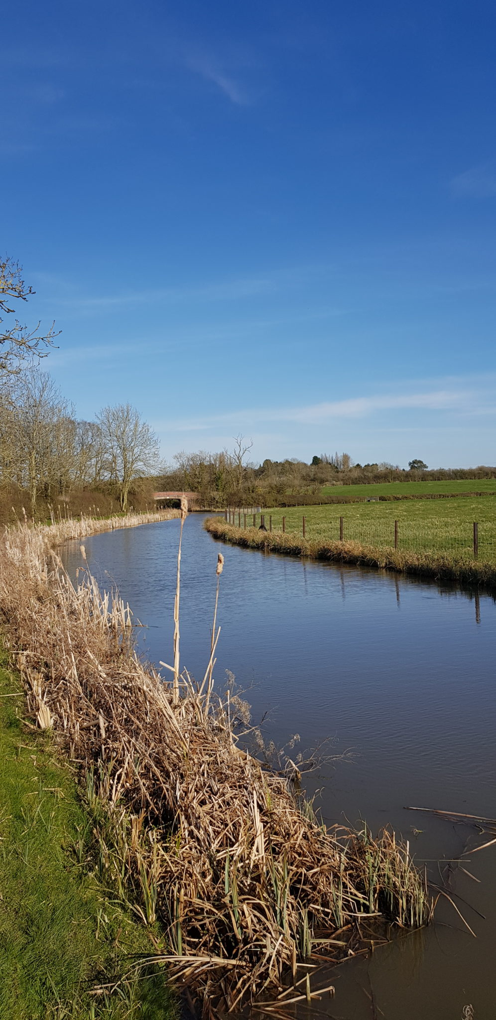 Lock-less Ashby Canal